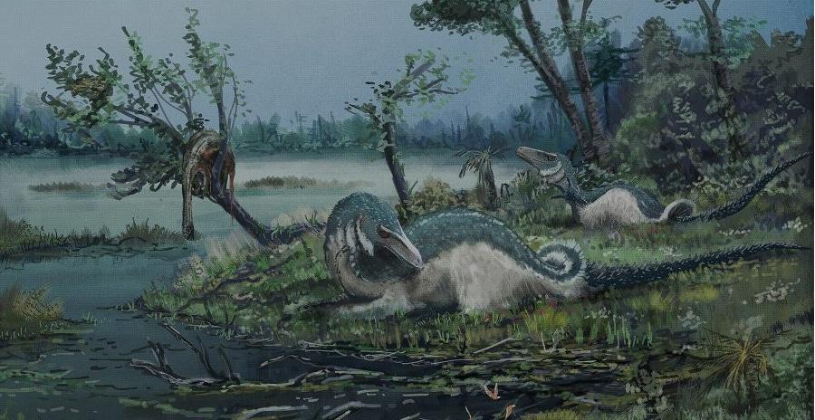 Did Dinosaurs Sleep at Night?